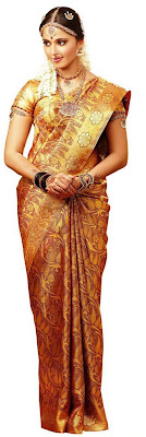 Chennai Silks Silk Sari designs