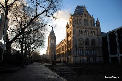 Museu de História Natural, Londres, Janeiro 2010