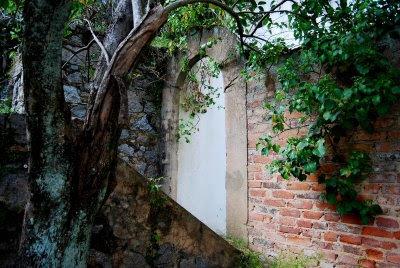 Algures nas Caldas de Monchique, © António Baeta Oliveira