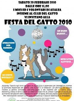 FESTA DEL GATTO AL GATTILE AZALEA: 20 FEBBRAIO
