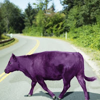 a purple cow is remarkable