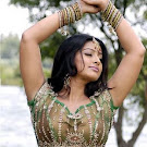 Sneha Spicy Photo Gallery