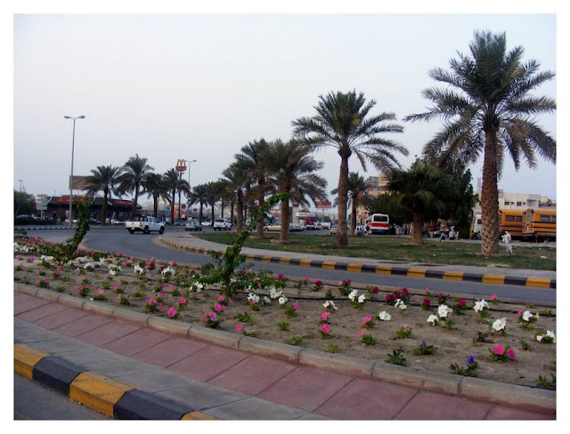 Turning right from the boat circle to hit the main street in Jubail. The straight drive to the Port circle is the area most populated with shops in Jubail.