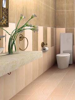 Bathroom Tiles Johnson India johnson india: bathroom