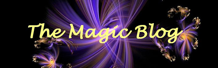 The Magic Blog
