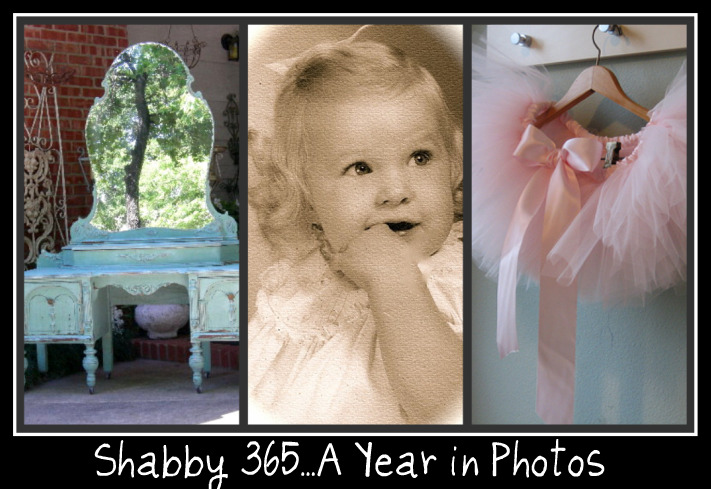 Shabby 365...A Year in Photos