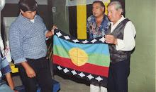 Las organizaciones pampas mapuches