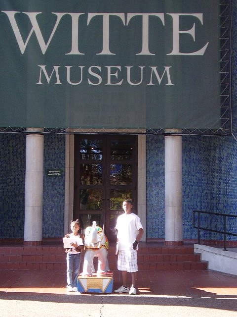 Witte museum coupons