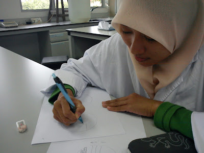 animal histology lab report matriculation