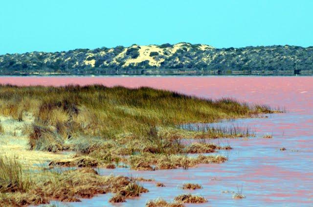 Hutt Lagoon, a hypersaline pink lake