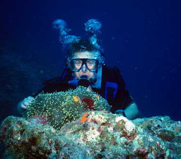 Diver with Magnificant Anemome and Anemonefish