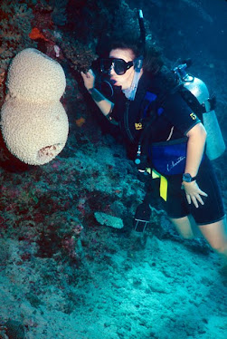 Diver with Sponge