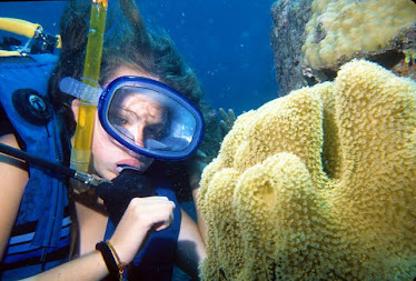 Diver with Coral Polyps