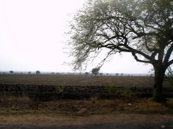 Índia - A Secura e o calor de Andra Pradesh.