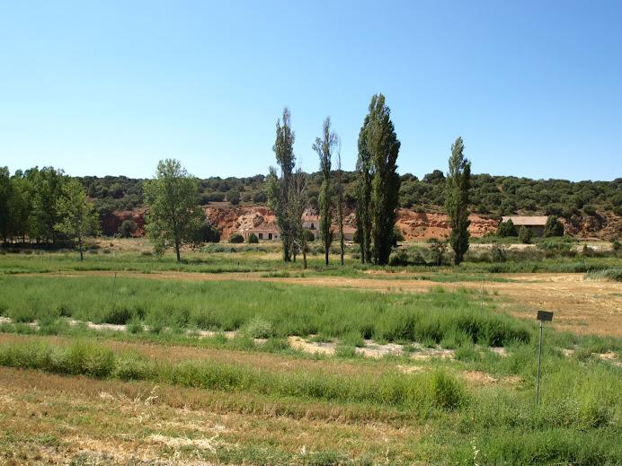 Estación de El Jardín, Albacete