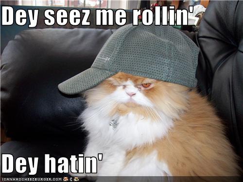 http://3.bp.blogspot.com/_0ppLhuA3OSo/TVFLXwgnT8I/AAAAAAAABfA/sUFCSJBDI5E/s1600/cat+they+see+me+rolling.jpg