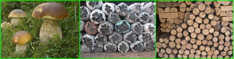 Mangal Kömürü Satışı - Ucuz Mangal Kömürü - Alımı ve Satımı - Alınır ve Satılır