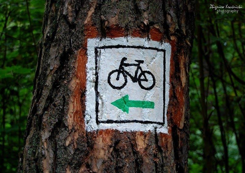Rowerem po olsztyńskim Lesie Miejskim