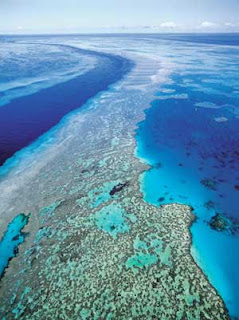 The Kerala Articles: Great Barrier Reef