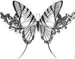 Lower Back Tattoos With Image Tattoo Designs Butterfly Tattoos Picture 2