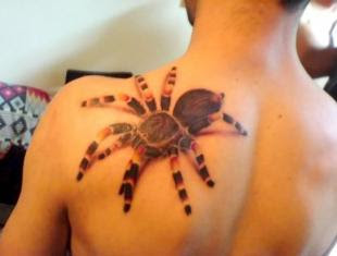 Design Spider 3D Tattoo On The Upper Back