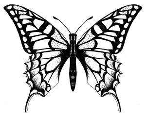 Beautiful Art of Tattoos Design With Image Butterfly Tattoo Design Picture 4