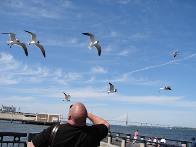 My wonderful groom taunting the sea gulls