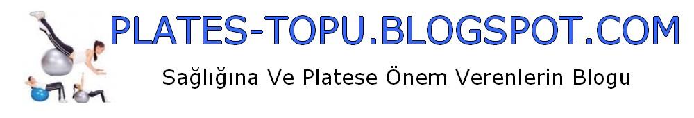 PLATES-TOPU.BLOGSPOT.COM