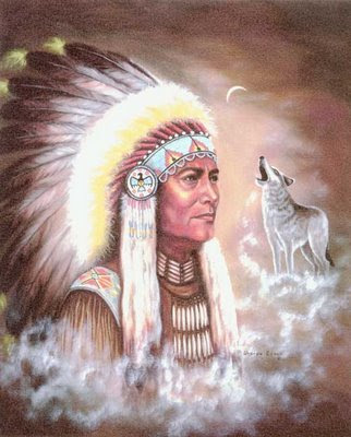 Cherokee chief from google image