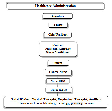 Presidential Chain Of Command http://sickgirlspeaks.blogspot.com/2010/06/professional-chain-of-command.html