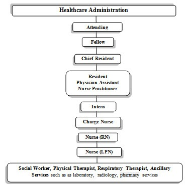 hospital hierarchy Traditional healthcare settings, including hospitals, operate under a hierarchy of  nursing to define the structures of order and organization.