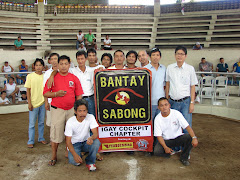 BANTAY-SABONG : IGAY COLISEUM