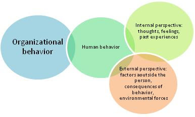 organizational behavior case study analysis