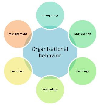 organization and behaviour A unifying framework for thinking about processes —or sequences of tasks and activities — that provides an integrated, dynamic picture of organizations and managerial behavior.