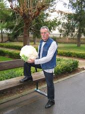 8 kilos de coliflor