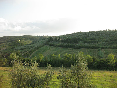 The scenic view from the front of the house of the rolling hills outside of Florence.