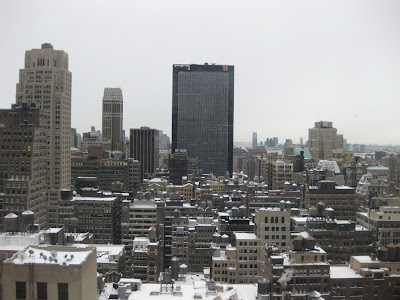 The rooftops were all covered in snow when we woke up from our hotel room at the Hilton Times Square on Sunday morning.  It was time to head to Central Park.