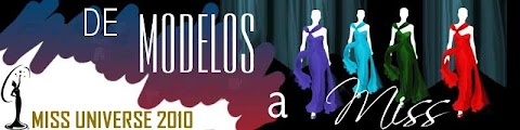 De Modelos a  Miss, Miss Universe 2010