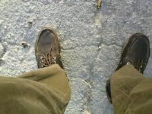 los zapatos de caminar