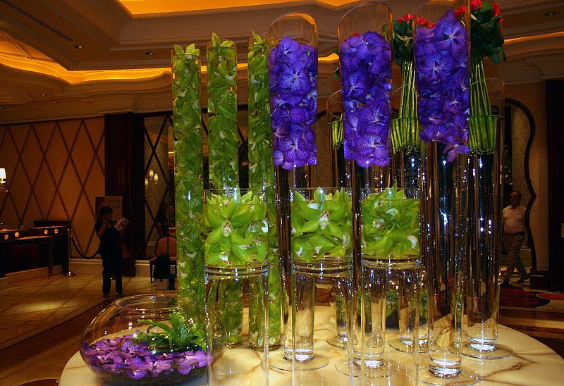 Rented Bliss Orchids Ahhhhh