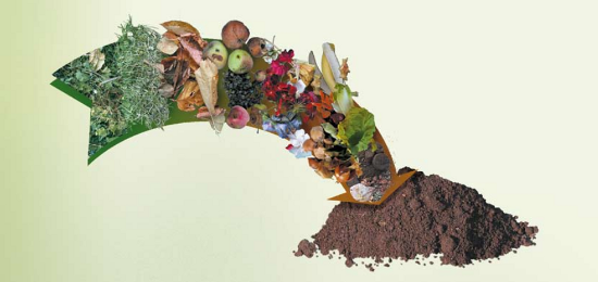 Compostaje - Abono organico para plantas ...