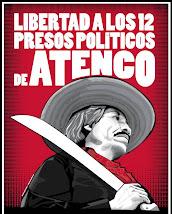 Libertad a los Presos Políticos!!!
