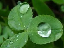 diaforetiko.gr : raindrops Κάθε ασθένεια περιέχει ένα κρυφό μήνυμα!