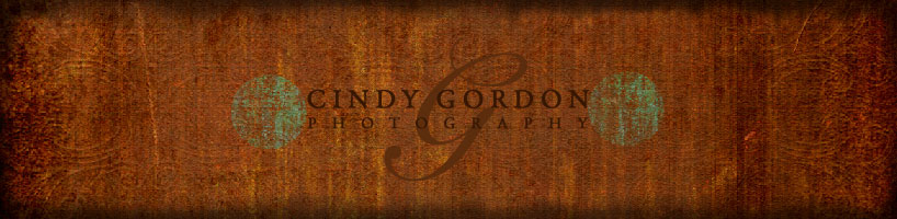 Cindy Gordon Photography
