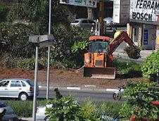 Jornal BOM DIA denuncia a destruição da vegetação de ornamentação em Santo André