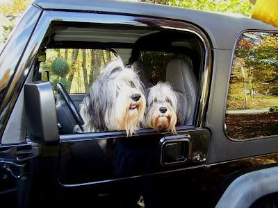 Rigby & Molly