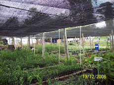 Tecnoparque Agroecologico Yamboro