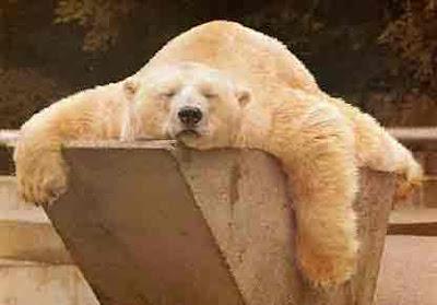 http://3.bp.blogspot.com/_12AiJY6ur_w/SDSxOxpN-rI/AAAAAAAABRk/qNi3cL2NmWE/s400/relaxando.jpg