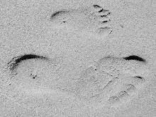 Spår i sanden..