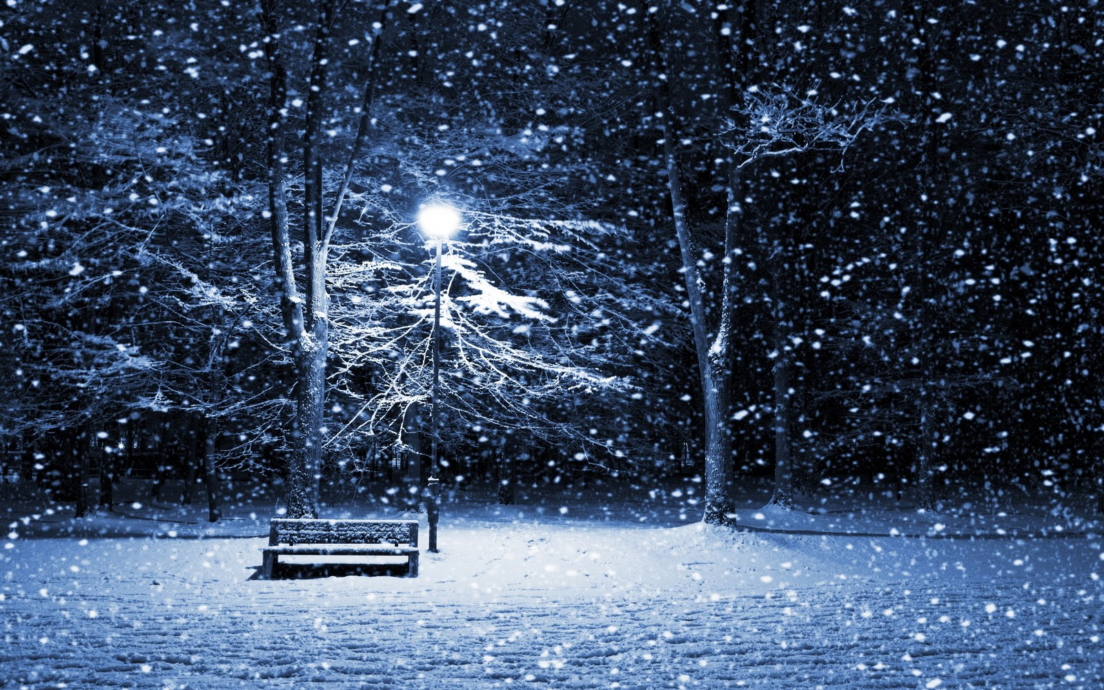 http://3.bp.blogspot.com/_14grgzfQGYA/TPlYjJ3JWXI/AAAAAAAACas/2OZwqt1dTmY/s1600/53-quiet-winter-night-widescreen-wallpapers-2560x1600.jpeg